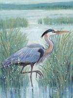 Wetland Heron I Fine-Art Print