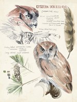 Wildlife Journals I Fine-Art Print
