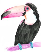 Technicolor Toucan II Fine-Art Print