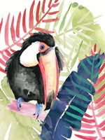 Toucan Palms II Fine-Art Print