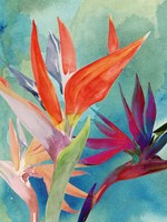 Vivid Birds of Paradise I Fine-Art Print