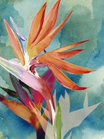 Vivid Birds of Paradise II Fine-Art Print