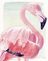 Pastel Flamingo II Fine-Art Print