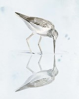 Sandpiper Reflections I Fine-Art Print