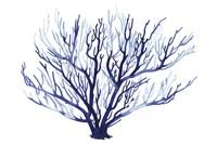 Azure Fan I Fine-Art Print