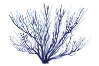 Azure Fan II Fine-Art Print