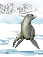 Arctic Animal IV Fine-Art Print