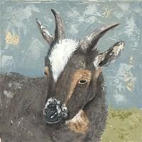 Farm Life-Grey Goat Fine-Art Print