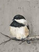 Winter Bird IV Fine-Art Print