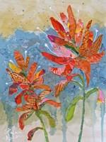 Indian Paintbrush Collage II Fine-Art Print