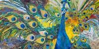 Percy Peacock I Fine-Art Print