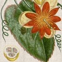 Cropped Turpin Tropicals I Fine-Art Print