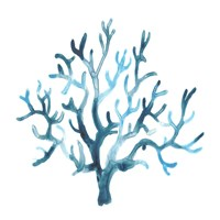 Azure Seafan I Fine-Art Print