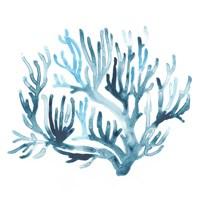 Azure Seafan III Fine-Art Print
