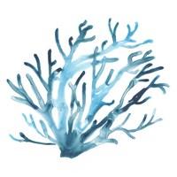 Azure Seafan IV Fine-Art Print