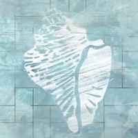 Cerulean Shell III Fine-Art Print