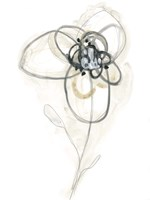 Monochrome Floral Study IV Fine-Art Print