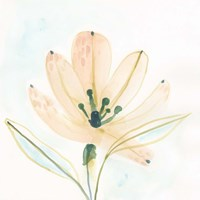Garden Essence VI Fine-Art Print