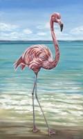 Beach Walker Flamingo I Fine-Art Print