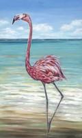 Beach Walker Flamingo II Fine-Art Print