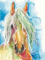Water Horse Fine-Art Print