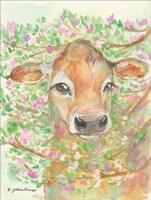 Baby Blossom Fine-Art Print