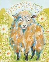 Daisy Fields Fine-Art Print