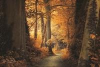 Path to the Light Fine-Art Print