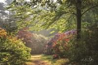Garden of Eden Fine-Art Print