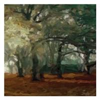 Cinnamon Forest 2 Fine-Art Print