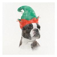 Christmas Rover 3 Fine-Art Print