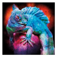 Party Gecko Fine-Art Print