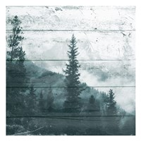 Fog On The Forest Fine-Art Print