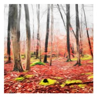 Fall Leaves Fine-Art Print