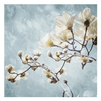 Tree Of White Flowers Fine-Art Print