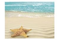Beach Star Fine-Art Print