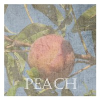 Peach Fine-Art Print