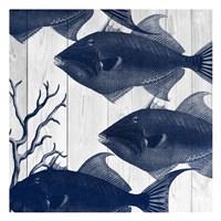 Fishes 2 Fine-Art Print