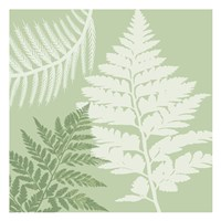 Green Jungle 3 Fine-Art Print