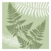 Green Jungle 4 Fine-Art Print