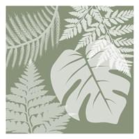 Green Garden 2 Fine-Art Print