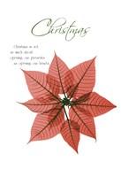 Seasonal Poinsettia 1 Fine-Art Print