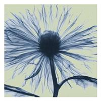 Emerald Chrysanthemum Fine-Art Print