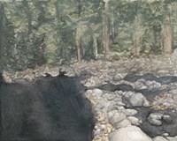 Virginia Forest II Fine-Art Print