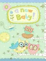 Baby Owl II Fine-Art Print
