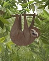 Sloth Hanging Around Fine-Art Print