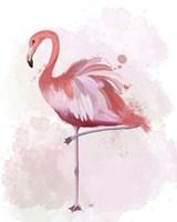 Fluffy Flamingo 4 Fine-Art Print