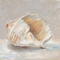 Impressionist Shell Study IV Fine-Art Print