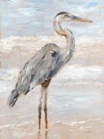 Beach Heron I Fine-Art Print