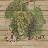 Grape Crate IV Fine-Art Print